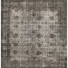 Transitional Overdyed Persian Gray Area Rug