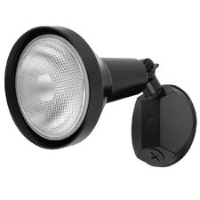 1 Light Security Light