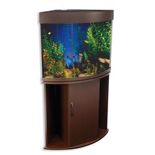50 Gallon Aquarium Tank