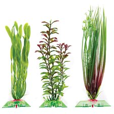 Assorted Aquarium Plants (Set of 3)