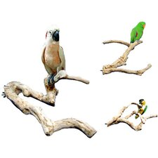 Java Wood Multi Branch Perch