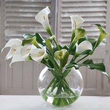 Calla Lilies in Glass Bubble Bowl