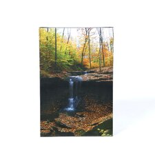 "Blue Hen Falls by Kurt Shaffer, Canvas Art - 24"" x 16"""