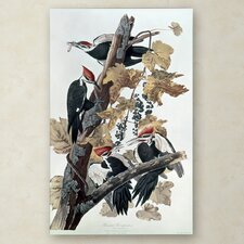 """""""Pileated Woodpeckers"""" Canvas Art"""