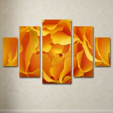 'Hypnotic Yellow Rose' by Kurt Shaffer 5 Piece Panel Art Set
