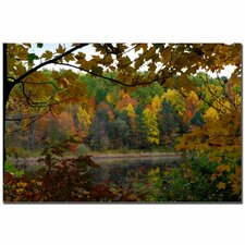 "Full Color Fall by Kurt Shaffer, Canvas Art - 16"" x 24"""