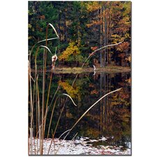 "<strong>Trademark Fine Art</strong> Serene Sylvan Pond by Kurt Shaffer, Canvas Art - 24"" x 16"""