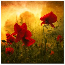'Red for Love' by Philippe Sainte-Laudy Photographic Print on Canvas