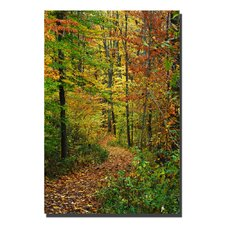 "<strong>Trademark Fine Art</strong> Fall Pathway by Kurt Shaffer, Canvas Art - 47"" x 30"""