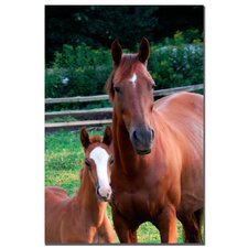 "<strong>Trademark Fine Art</strong> Mother and Dauther by Kurt Shaffer, Canvas Art - 24"" x 16"""