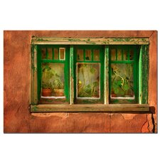 "<strong>Trademark Fine Art</strong> Cactus Window by Aiana, Canvas Art - 16"" x 24"""