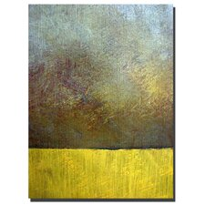 "<strong>Trademark Fine Art</strong> Earth Study II by Michelle Calkins, Canvas Art - 32"" x 24"""
