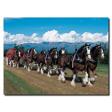"<strong>Trademark Fine Art</strong> Clydesdales in Blue Sky Mountains 14"" Canvas Art"