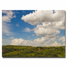 "<strong>Trademark Fine Art</strong> ""Middle of Nowhere"" Canvas Art"