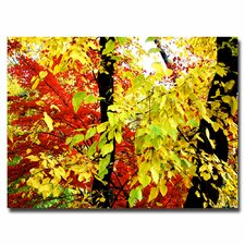 "<strong>Trademark Fine Art</strong> ""Foliage"" Canvas Art"
