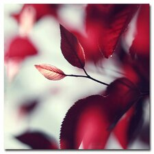 "<strong>Trademark Fine Art</strong> ""When Spring is Red"" Canvas Art"