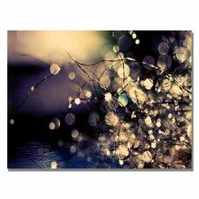 """Fairies in My Garden"" by Beata Czyzowska Young Photographic Print on Canvas"