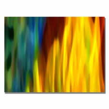 "<strong>Trademark Fine Art</strong> ""Fire and Water"" Canvas Art"