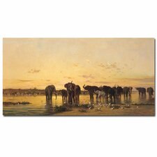 "<strong>Trademark Fine Art</strong> ""African Elephant"" Canvas Art"