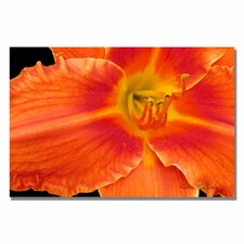 <strong>Trademark Fine Art</strong> 'Orange Day 'Lily' Canvas Art