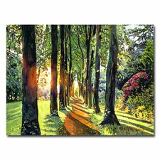 <strong>Trademark Fine Art</strong> 'Forest of Enchantment' Canvas Art