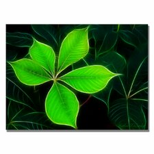 <strong>Trademark Fine Art</strong> 'Big Green Leaf' Canvas Art