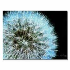 'Dandelion Seed Head Full' by Kathie McCurdy Graphic Art on Canvas