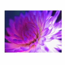 Mod Dahlia by Kathy Yates Photographic Print on Canvas