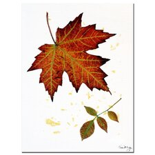<strong>Trademark Fine Art</strong> 'Red Maple' Canvas Art