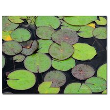 'Frog in the Lily Pond' Canvas Art