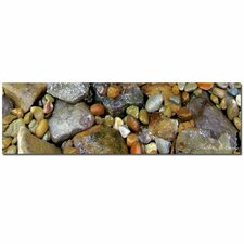 <strong>Trademark Fine Art</strong> 'Rocks' Canvas Art