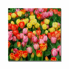 <strong>Trademark Fine Art</strong> 'Living Bouquet of Tulips' Canvas Art