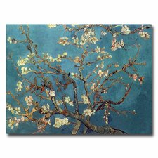 <strong>Trademark Fine Art</strong> 'Almond Blossoms' Canvas Art