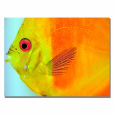 <strong>Trademark Fine Art</strong> 'Tropical Fish Close-up' Canvas Art