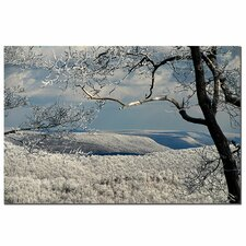 <strong>Trademark Fine Art</strong> 'Winter Scene' Canvas Art