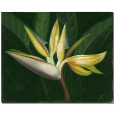 <strong>Trademark Fine Art</strong> 'Lilies Canvas Art