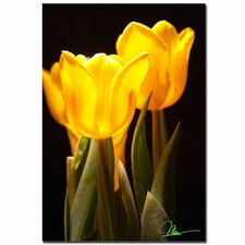 <strong>Trademark Fine Art</strong> 'Yellow Tulips' Canvas Art