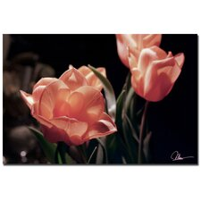 <strong>Trademark Fine Art</strong> 'Pink Tulips' Canvas Art