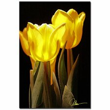 <strong>Trademark Fine Art</strong> 'Yellow Tulips II' Canvas Art