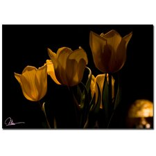 <strong>Trademark Fine Art</strong> 'Bouquet of Tulips' Canvas Art