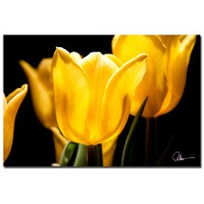 <strong>Trademark Fine Art</strong> 'Yellow Tulips V' Canvas Art
