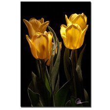 <strong>Trademark Fine Art</strong> 'Yellow Blooms II' Canvas Art