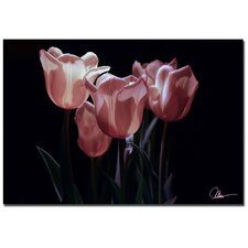 <strong>Trademark Fine Art</strong> 'Pink Blooms IV' Canvas Art