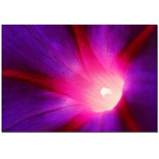 <strong>Trademark Fine Art</strong> 'Love Beauty' Canvas Art
