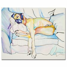 'Sleeping Beauty' Canvas Art