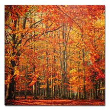 <strong>Trademark Fine Art</strong> 'Red November' Canvas Art