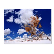 <strong>Trademark Fine Art</strong> 'Burn Tree' Canvas Art