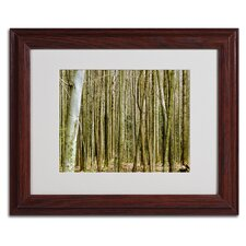 "<strong>Trademark Fine Art</strong> ""Forest Floor Spring"" Framed Art"