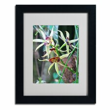 """Orchids I"" Framed Art"
