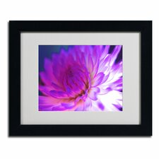 """Mod Dahlia"" by Kathy Yates Framed Painting Print"